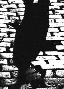 mancha-negra