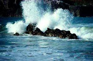 Mar de Poesías