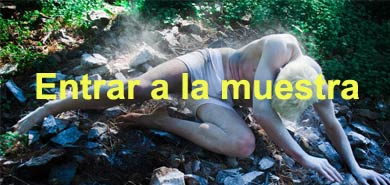 portada muestra thing in the forest