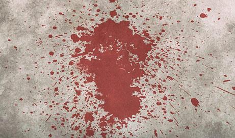 ¿Quién mató a Fermín?