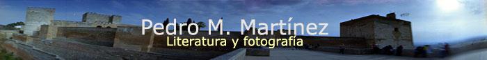 enlace web Pedro Martínez Corada