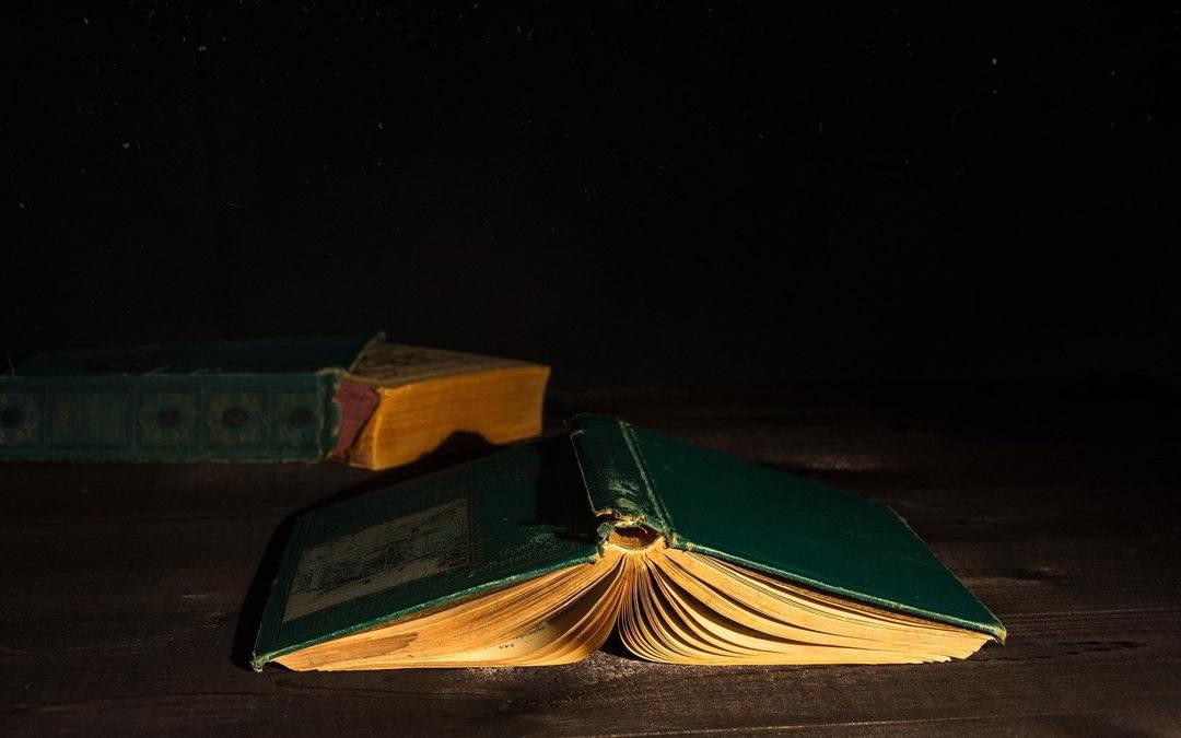 El señor de los libros